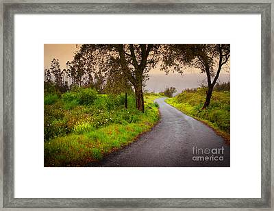 Road On Woods Framed Print by Carlos Caetano