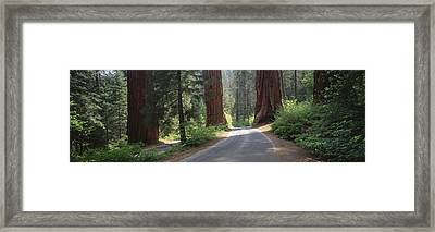 Road Passing Between The Guardsmen Framed Print