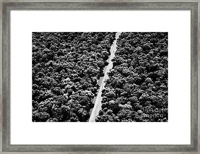 Road Through Brazilian Sub Tropical Rain Forest Iguacu Parana Brazil South America Framed Print by Joe Fox