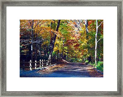Road To Autumn Framed Print