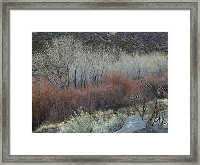 Road To Chimayo  Framed Print