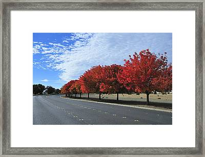 Road To Fall Colors Framed Print by Richard Leon