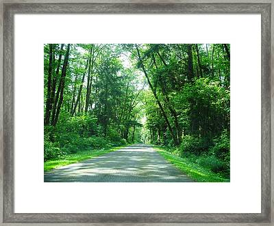 Road To La Push Framed Print