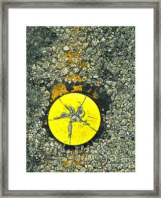 Road Urchin Framed Print