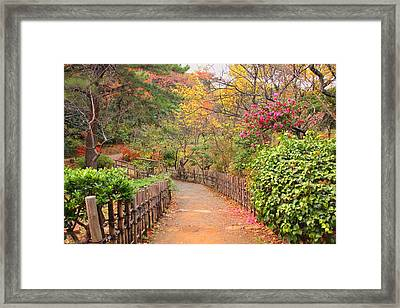 Road With Fence Framed Print by ~~**Yuri's Photography**~~