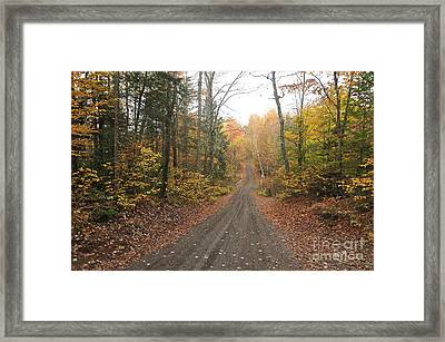 Roads Less Traveled Framed Print by Catherine Reusch Daley