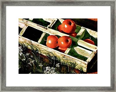 Roadside Farm Stand  Framed Print