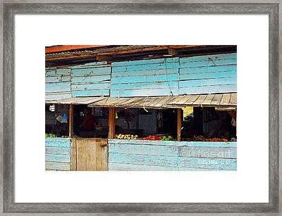 Roadside Fruit Stand- Belize Framed Print by Li Newton
