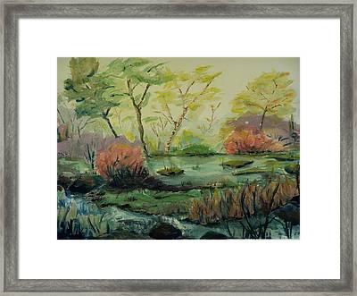 Roadside Pond Framed Print