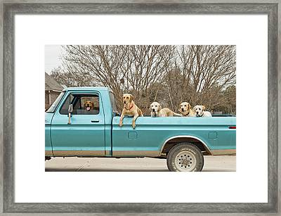 Roadtrip Framed Print