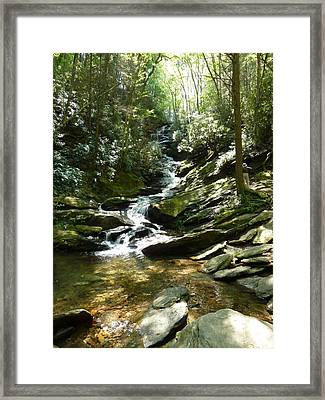 Roaring Creek Falls - II Framed Print by Joel Deutsch