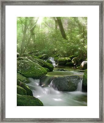 Roaring Fork Framed Print by Cindy Haggerty