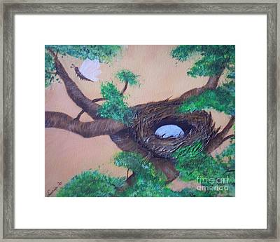 Robin's Nest Framed Print by Lucia Grilletto