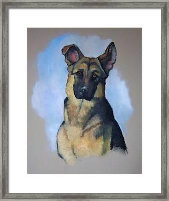 Rob's Dog Framed Print by Joyce Geleynse