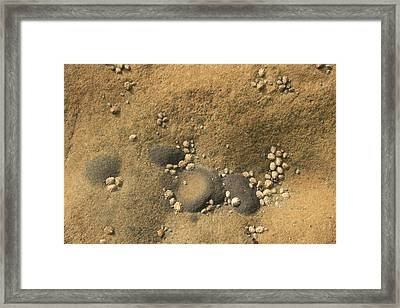 Rock And Shells Framed Print by Suzanne Lorenz