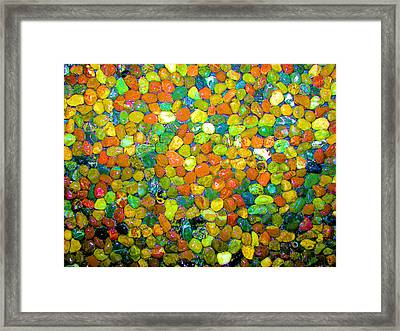 Framed Print featuring the photograph Rock Candy by Carolyn Repka