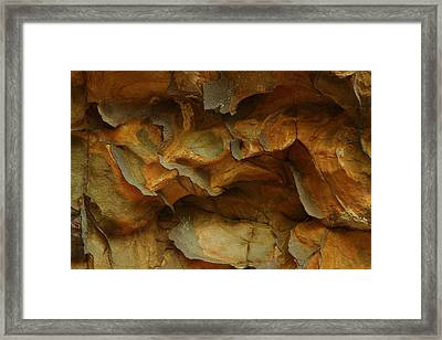 Rock Framed Print by Daniel Reed
