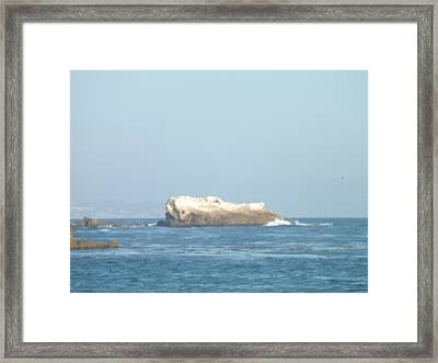 Rock On The Water Framed Print by Jamie Diamond