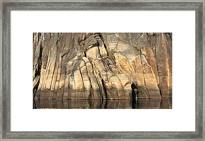 Rock Paws Framed Print by Cathie Douglas