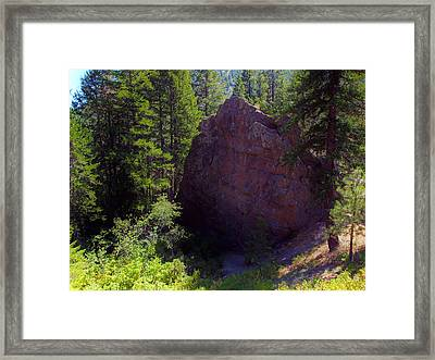Rock Show Framed Print by Christian Jansen