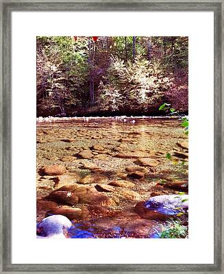 Framed Print featuring the photograph Rock Work by Janice Spivey