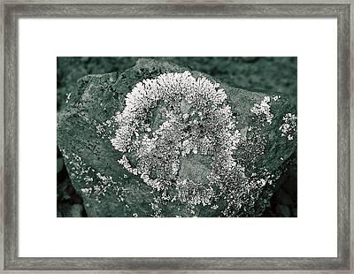 Rockin' Skull Framed Print by