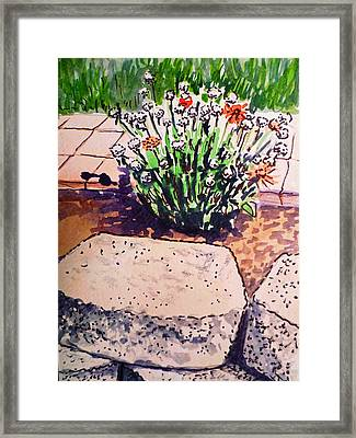 Rocks And Flowers Sketchbook Project Down My Street Framed Print