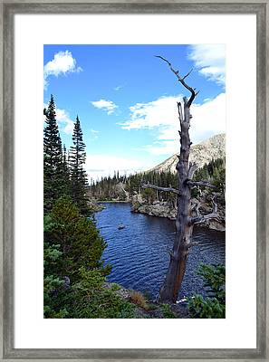 Rocky Mountain National Park1 Framed Print by Zawhaus Photography