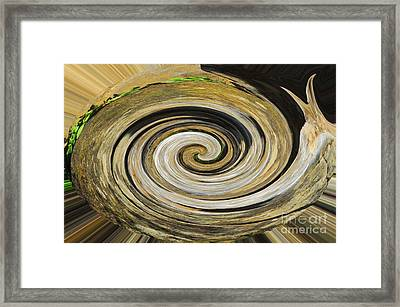 Framed Print featuring the photograph Rocky Road by Cindy Manero