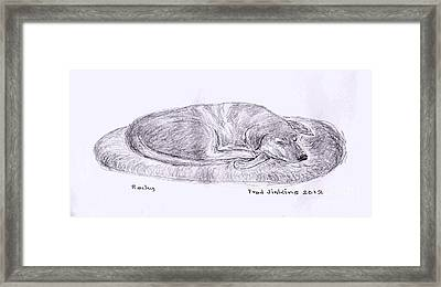 Rocky Sleeping Framed Print by Fred Jinkins