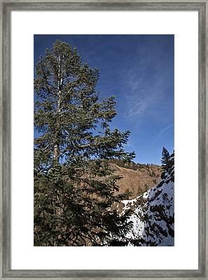Rocky View Framed Print by Dennis Hofelich