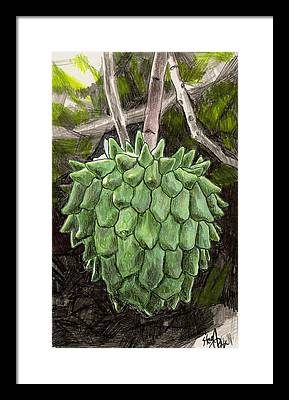 Snotfruit Drawings Framed Prints