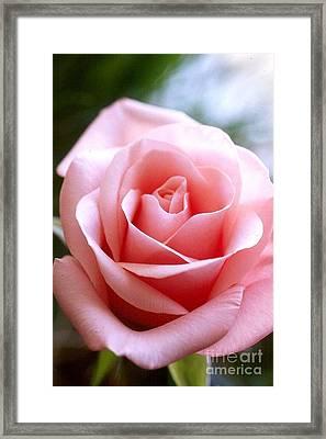 Romance Framed Print by Anne Gordon