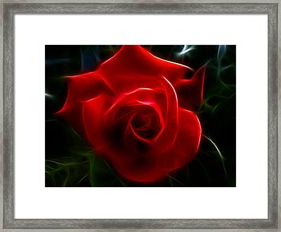 Romantic Red Rose Framed Print by Cindy Wright