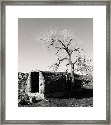 Root Cellar Framed Print by Tony Grider