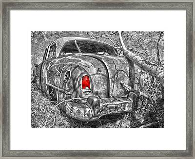 Roots Of A Journey  Framed Print