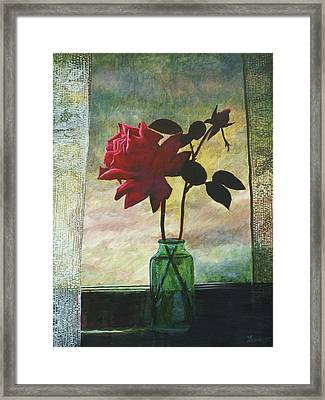 Rose And Rosebud Framed Print