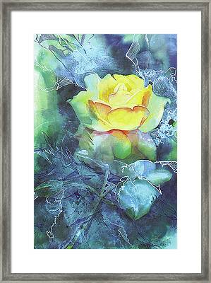 Rose Framed Print by Eunice Olson