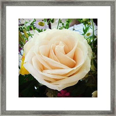 #rose #flower #pink #pretty #bouquet Framed Print
