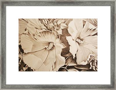 Rose Of Sharon Framed Print by Yvonne Scott
