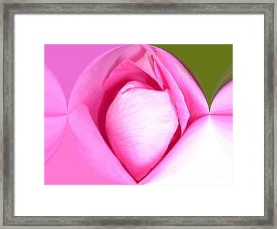Rose1 Framed Print