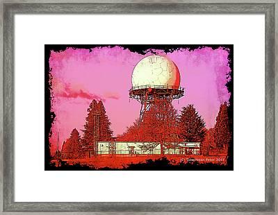 Rosebuzz Framed Print by Tobeimean Peter