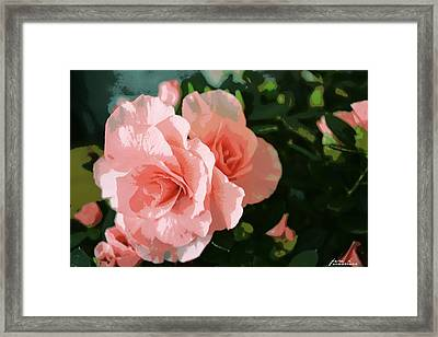 Roses Are Pink Framed Print by Fern Korn