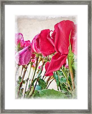 Roses In White Framed Print by Joan  Minchak
