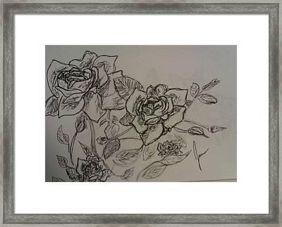 Roses Framed Print by Jamie Mah