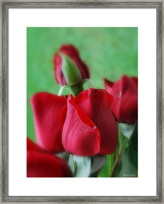 Framed Print featuring the photograph Roses by Marija Djedovic