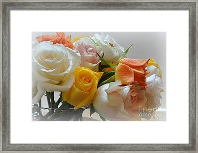 Framed Print featuring the photograph Roses by Tanya  Searcy
