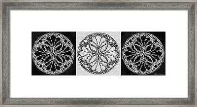 Rosette In Black And White Framed Print by Jerrett Dornbusch