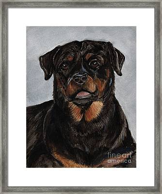 Framed Print featuring the painting Rottweiler  by Nancy Patterson