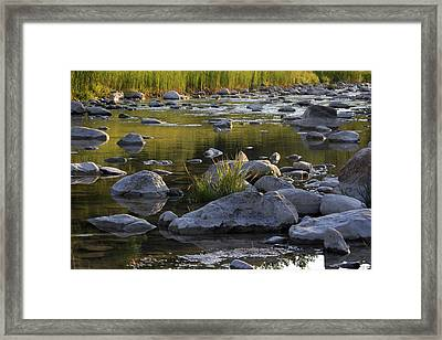 Rouge Reflections Three Framed Print by Alan Rutherford